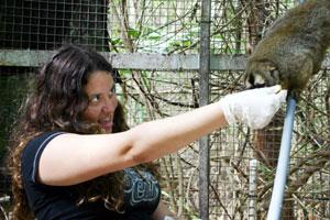 Exceptional Help at the DuMond Conservancy for Primates and<br /><br />  Tropical Forests